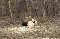 Группа мужчин в Днепропетровской области занималась незаконной вырубкой леса: у браконьеров изъяли 6 кубов дуба
