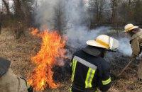 На Днепропетровщине горел сухостой площадью 3,5 га
