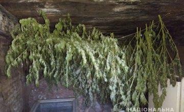 В Кривом Роге двое мужчин занимались незаконным хранением марихуаны