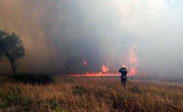 В Днепропетровской области ликвидирован пожар в лесном массиве