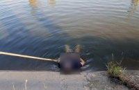 В Магдалиновском районе из воды достали тело молодого парня (ФОТО)