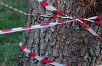 Суд может запретить деятельность «Зеленстроя»
