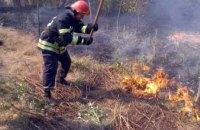 В Днепропетровской области снова горел лес