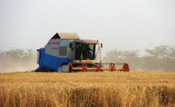 Днепропетровская область планирует начать уборку урожая в конце июня — начале июля 2008 года