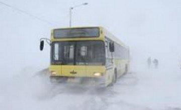 Погода в Днепре 12 января: снежно и ветрено