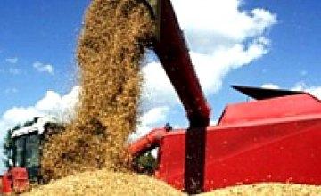 В 2008 году объем сельскохозяйственного производства в Днепропетровской области увеличился на 28,9%