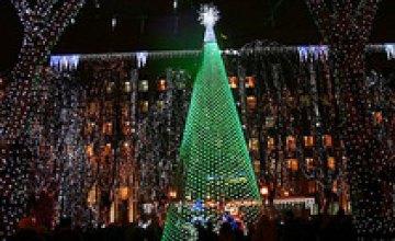 Днепропетровская губернаторская елка будет работать до 21 января