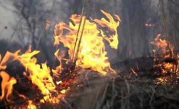 Неутешительная статистика: на Днепропетровщине увеличивается количество пожаров в экосистемах