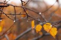 Погода в Днепре 15 ноября: холодно и облачно