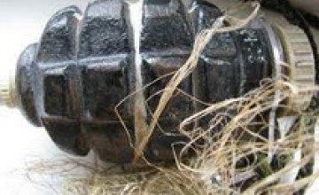 У жителей Днепропетровской области изъяли 2 гранаты