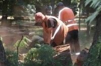 В горсовете Днепра объяснили, почему удаляют деревья в парке им. Лазаря Глобы