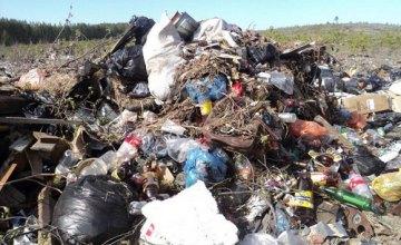 В Кривом Роге, в отличие от Днепра, отказались принимать львовский мусор, - СМИ