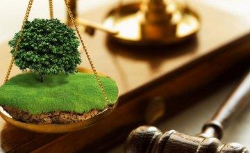 Незаконно перешел в наследство: на Днепропетровщине требуют вернуть громаде участок стоимость около 9 млн грн