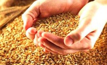 Днепропетровская область планирует рекордный урожай зерна в 2008 году - 3,8 млн. т