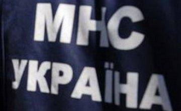 Действия желтоводского «Ландика» признали мелким хулиганством
