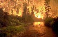 В Днепропетровской области за пол года произошло около 2 тыс пожаров в природных экосистемах
