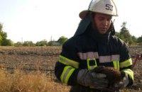 В Днепропетровской области пожарные спасли из огня ежика (ФОТО)
