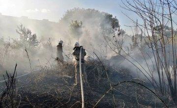 В Павлограде мужчина едва не погиб, уснув рядом с пожаром