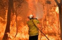 На Днепропетровщине спасатели потушили пожар в экосистеме (ВИДЕО)