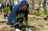 Один мільйон дерев за добу: екологічна акція на Дніпропетровщині