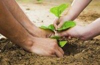 Мешканців Дніпропетровщини запрошують долучитися до всеукраїнської акції «1 мільйон дерев – за 24 години»