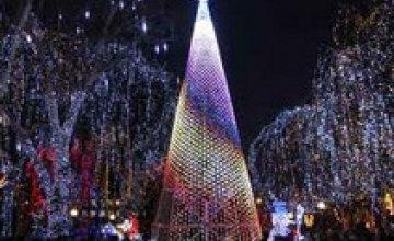 В Киеве на Майдане Независимости больше не будут устанавливать новогоднюю елку