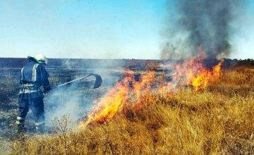 С начала года в экосистемах Днепропетровщины произошло около 6 тыс. пожаров