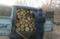 В Днепре задержали граждан во время незаконной вырубки древесины