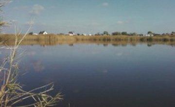 Вдоль озера Шпаковое высадили 1,5 тыс новых деревьев