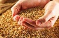 По прогнозам аграриев, урожай зерна в Днепропетровской области в 2008 году составит 3,7 млн. т