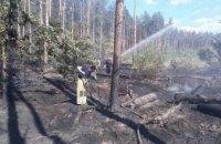 В Киеве произошел пожар в лесничестве (ФОТО)