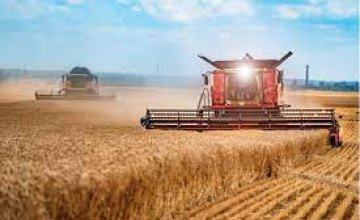 Если погодные условия и в дальнейшем будут благоприятными - Украина получит один из лучших урожаев, - фермер