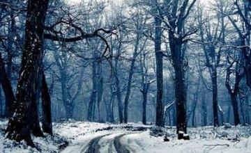 В Украину после выходных вернутся холода