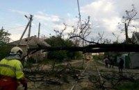 В Чечеловском районе Днепра упавшее дерево оборвало линию питания электротранспорта (ФОТО)