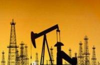 Оппозиционное правительство представило программу реформ топливно-энергетического комплекса