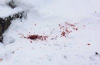 В Днепропетровской области обнаружили обезглавленное тело пожилой женщины