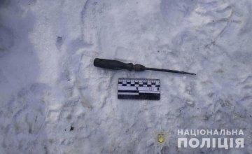 Ранее судимый за кражу житель Слобожанского снова обокрал дом
