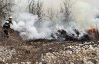 В Павлограде загорелся сухостой: огнём уничтожено 50 квадратных метров
