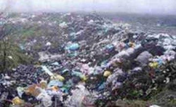 На территории Никопольского кладбища «хоронили» отходы