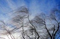 Погода в Днепре 4 марта: прохладно и ветрено