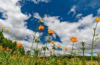 Украинские синоптики дали прогноз погоды на июнь