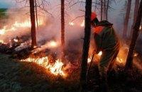 За минувший год пятая часть Днепропетровской области выгорела от пожаров в экосистемах: ГСЧС призывает жителей региона быть ответственнее