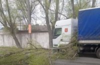 В АНД районе Днепра на грузовик упало дерево (ФОТО)
