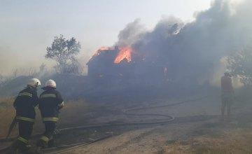 На Днепропетровщине в результате пожара сухостоя загорелись 3 жилых дома