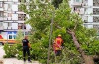 В Днепре спасатели убрали упавшее дерево на детскую площадку