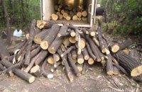 В Кривом Роге задержан мужчина, занимавшийся незаконной вырубкой деревьев: изъято 4 куба леса