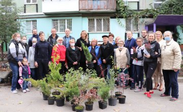 «У нас будет красивый двор»: жители ж/м 12 квартал и Тополь-2 поделились впечатлениями от проекта «Двори для життя»