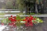 Погода в Днепре 10 ноября: прохладно и облачно