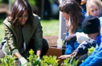 Жена Обамы посадила овощи на грядке Белого дома