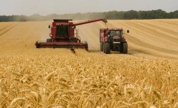 На Дніпропетровщині зібрали перший мільйон тонн зернових